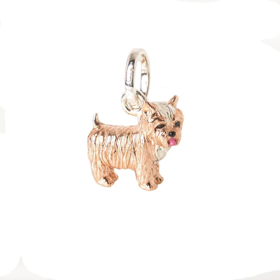 yorkshire terrier charm