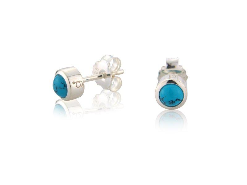 Turquoise Earrings (December)